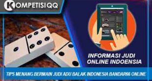 Tips Menang Bermain Judi Adu Balak Indonesia Bandar66 Online